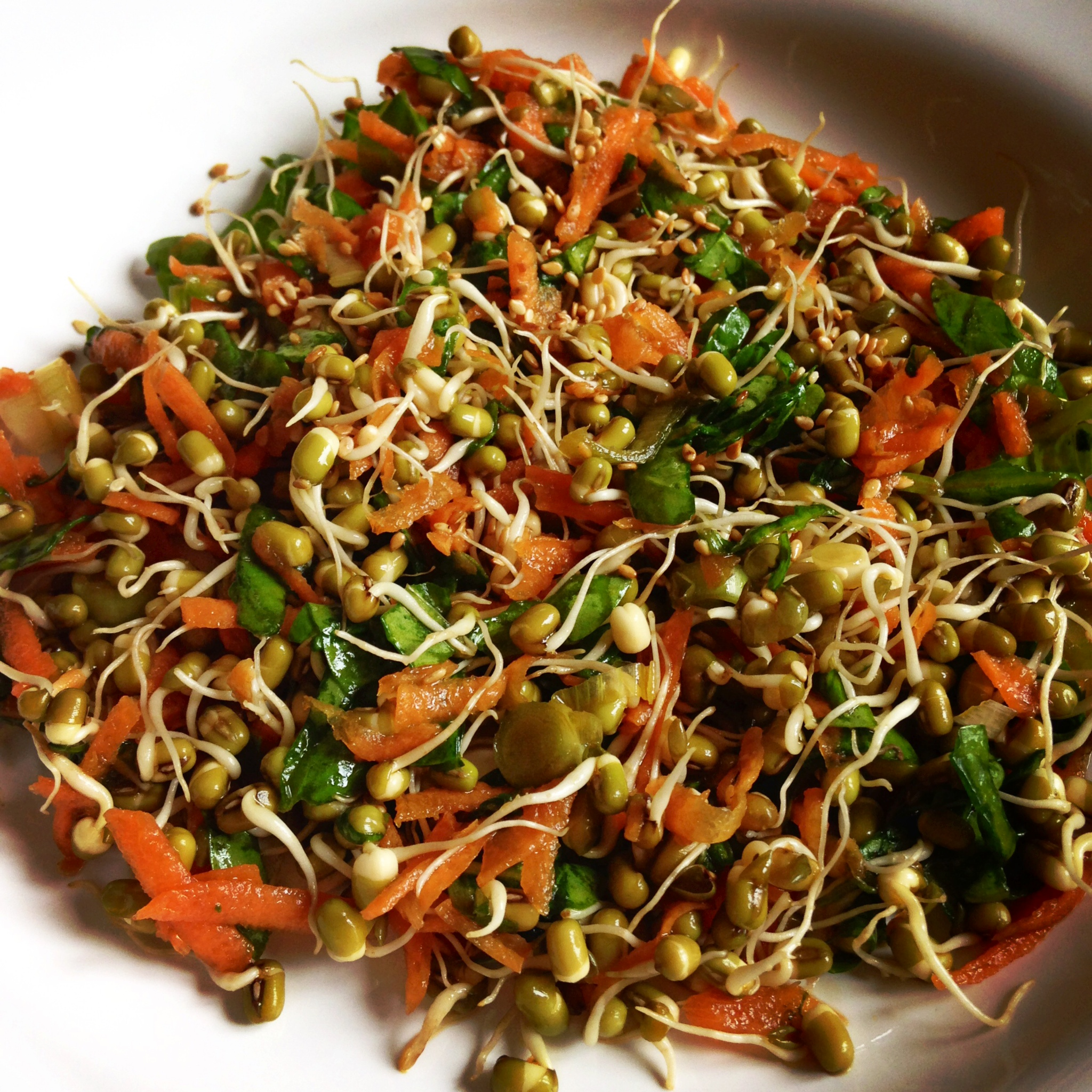 Sprouted Mung Bean Salad in Tamari Ginger Dressing